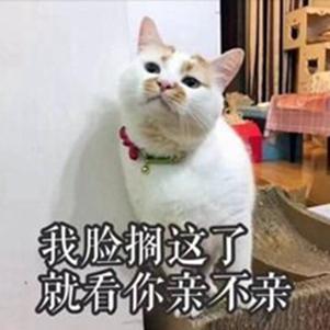 一波《鬼灭之刃》性感猫片,在线COS点击就看!