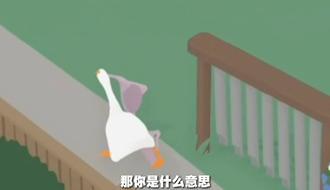 偷胸罩鹅大战大妈,逍遥鹅,社会鹅哥名场面