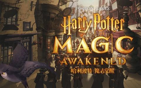 【哈利波特:魔法觉醒】内测大佬都不知道的七个秘密!