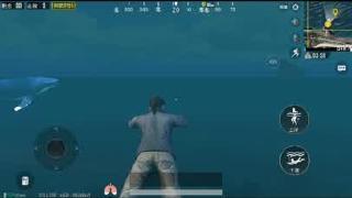 刺激战场鲸鱼