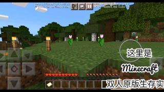 【Minecraft】双人原版生存