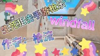 生死狙击手游枪乐系列:《Windfall》
